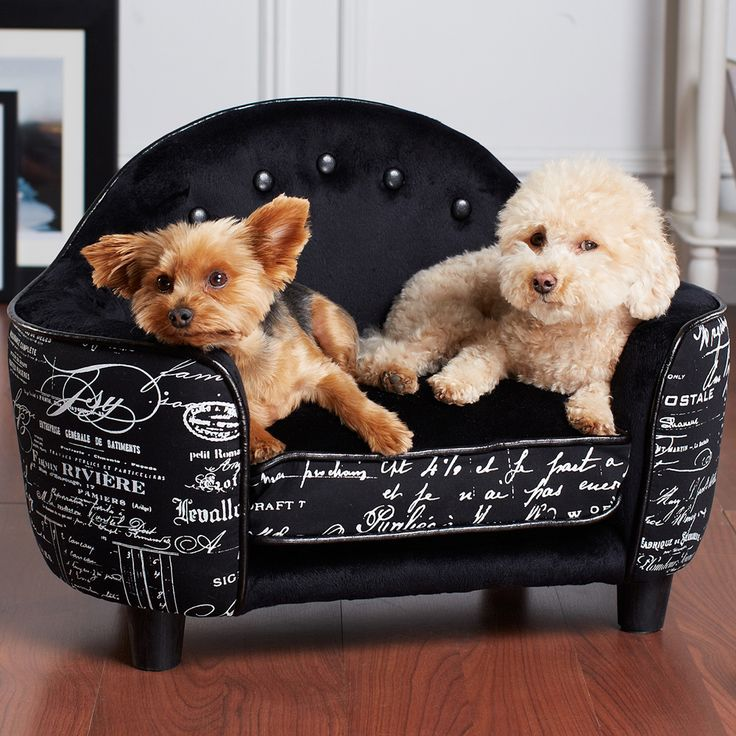 25 Best Ideas About Dog Couches On Pinterest Dog Couch Cover