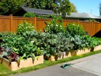1000+ ideas about Vegetable Garden Layouts on Pinterest ...