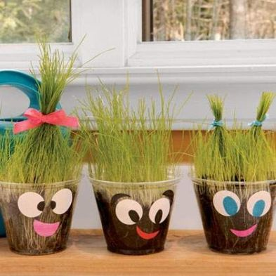Image result for plants decor for kindergarten
