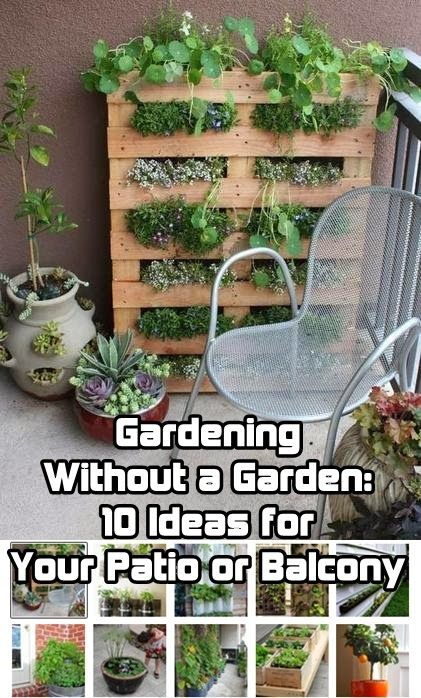 25 Best Ideas About Apartment Balcony Garden On Pinterest Small