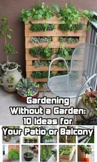 25+ best ideas about Small patio gardens on Pinterest ...