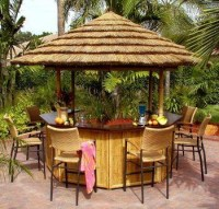 Tropical Theme Parties | Decks, Backyards and Bar