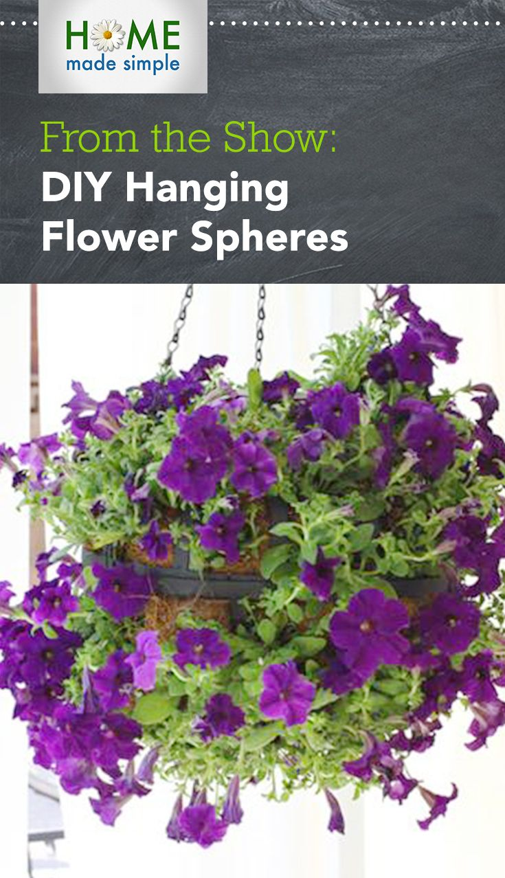 Create a gorgeous distinctive hanging basket and add some