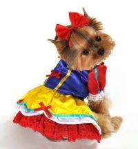 17 Best images about cool dog costumes on Pinterest   Best ...