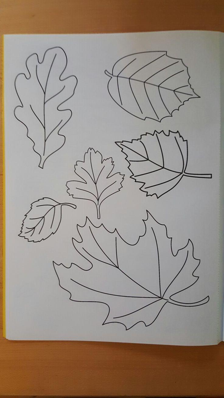 Herbstblätter Malvorlagen (template) Pinterest
