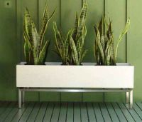Planters, The plant and Planter box designs on Pinterest