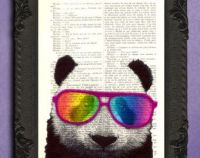 17 best images about Panda Problem on Pinterest | Hipster ...