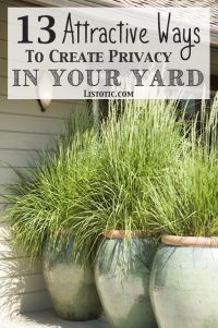 25+ best ideas about Backyard landscaping privacy on ...