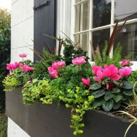 17 Best images about WiNDoW boXEs on Pinterest | Hakone ...
