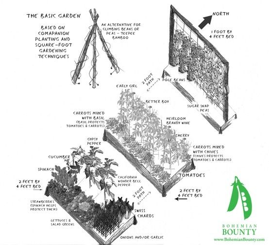 square foot garden plan by Jackie, need a climbing wall