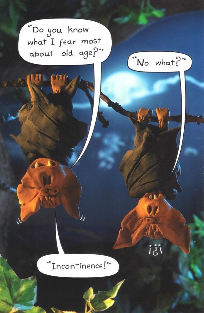 Funny Fear Incontinence Bats Birthday Card Humour Greeting