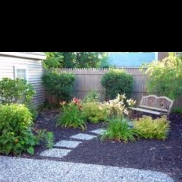 grassless backyard inspiration