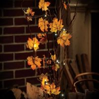 17 Best images about Indoor Fall Lanterns Decor on ...
