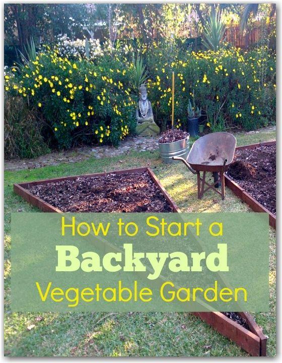 25 Best Ideas About Backyard Vegetable Gardens On Pinterest
