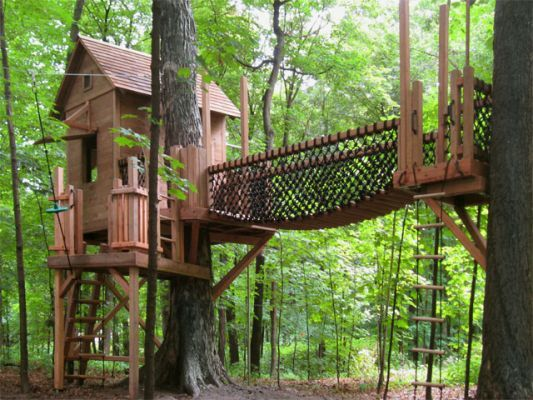 25 Best Ideas About Tree House Designs On Pinterest Building A