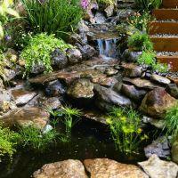 17 best ideas about Backyard Stream on Pinterest | Garden ...