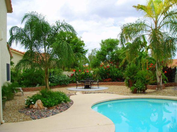arizona tropical style backyard