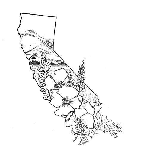 California Poppy California Poppy For The Love One