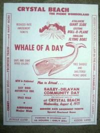 1971 Vintage Crystal Beach Amusement Park Sign Wild Mouse ...