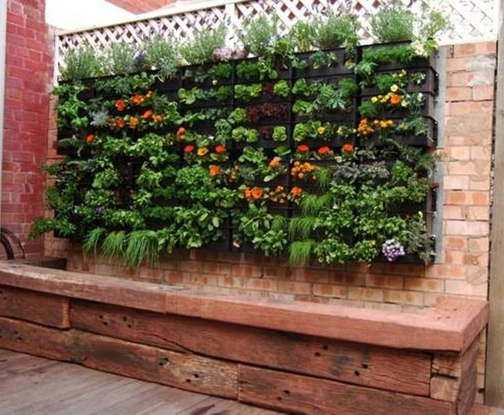 15 Best Images About Small Space Gardening Ideas On Pinterest