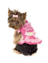 25+ Best Ideas about Designer Dog Clothes on Pinterest ...