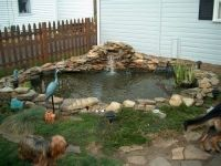 8 best ideas about Duck Pond on Pinterest | Green roofs ...