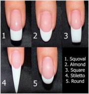 nail shape chart design