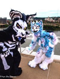 The 25+ best Furry Costumes ideas on Pinterest | Fursuit ...