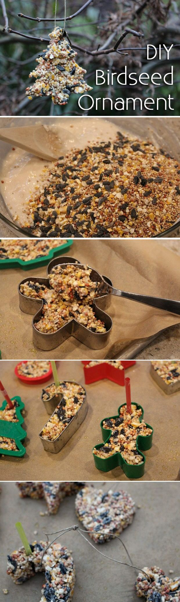 A festive craft the kids will enjoy making and the the birds will love! A homemade