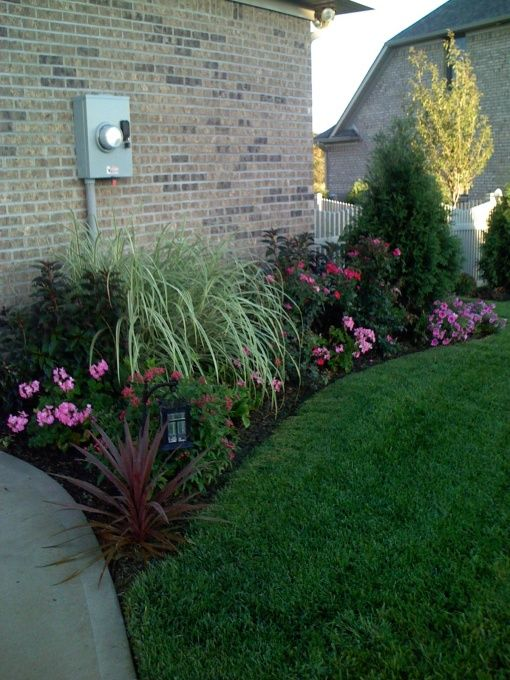 knockout roses landscaping ideas