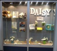 14 best images about Daisy Award Ideas on Pinterest | Wall ...