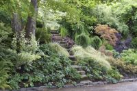 25+ best ideas about Hillside Garden on Pinterest | Hill ...