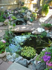 25+ Best Ideas about Small Backyard Ponds on Pinterest ...
