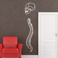 Details about Skull and Spine Bones Wall Art Sticker Wall ...
