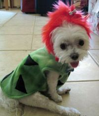 1000+ images about Flintstones on Pinterest