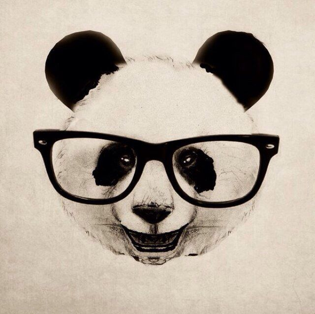 17 Best ideas about Panda Art on Pinterest