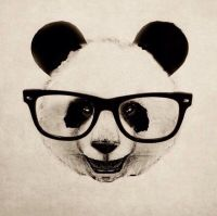 17 Best ideas about Panda Art on Pinterest