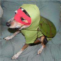 TMNT Raphael Dog Costume