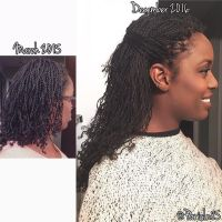 17 Best ideas about Natural Hair Twists on Pinterest ...
