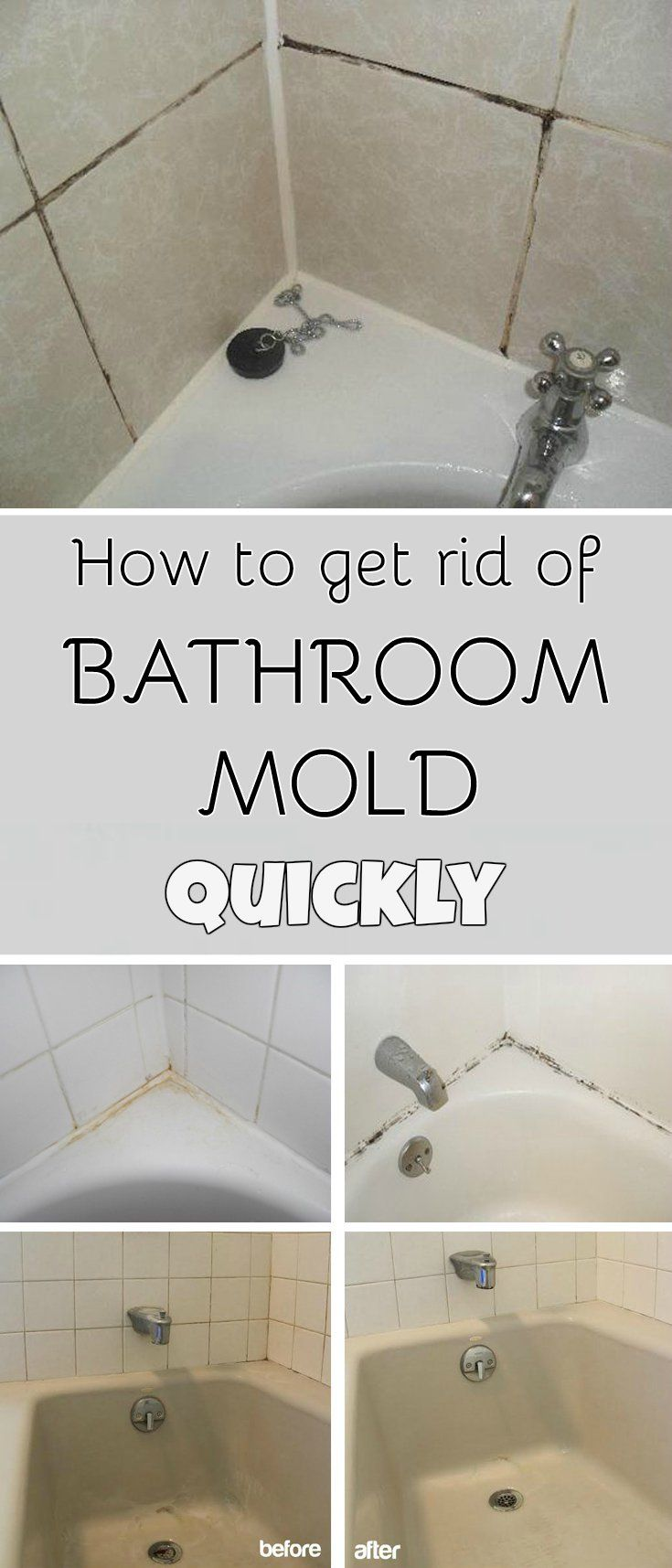 Best 25 Bathroom mold ideas on Pinterest  Mold in