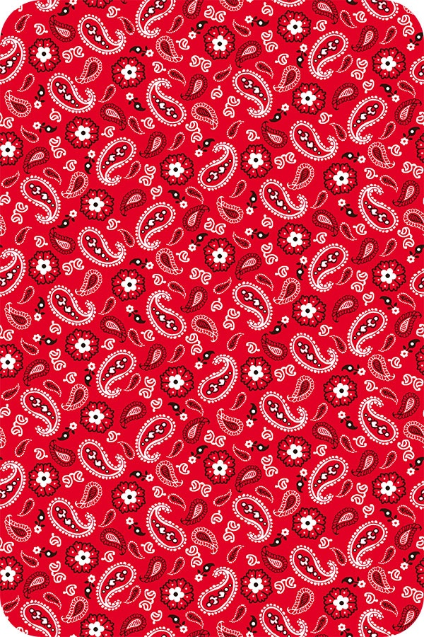 Cute Itouch Wallpapers 359 Best Images About Paisley Junk On Pinterest Behance