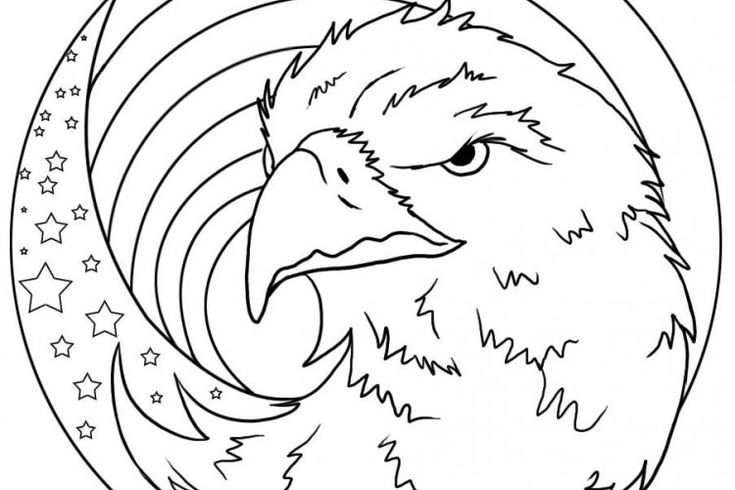 EAGLE colouring pages FREE @ Unique Printable Coloring