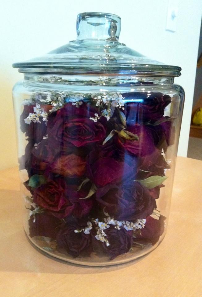 Dried Roses Ive Kept From My Boyfriend  My Creations