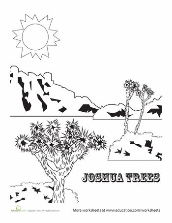 111 best images about Joshua Field Trip on Pinterest
