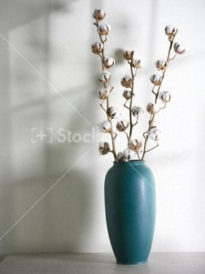 living room flower vases brown sofas in rooms 92 best images about cotton stem on pinterest ...