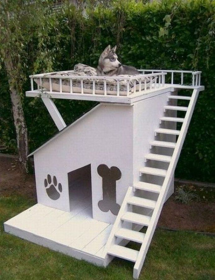 Cute House Ideas House Ideas