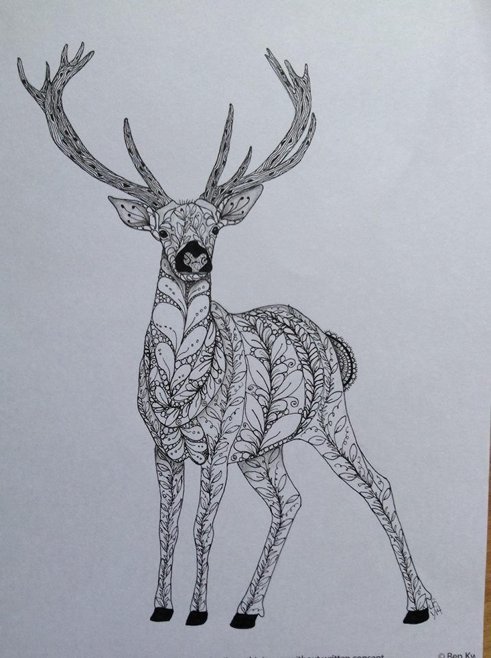 Zentangle Deer Via Carol Hoffman Zentangled Animals