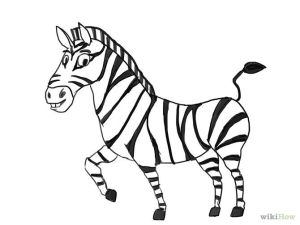 zebra draw drawing outline line zebras sketches wikihow step lying lion down easy drawings simple clipart animal outlines animals butterfly