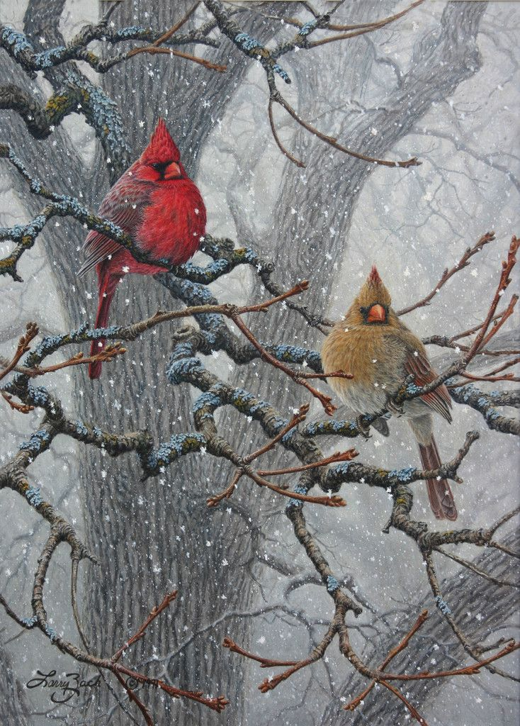 Winter Pair Cardinals Bird Painting By Larry Zach
