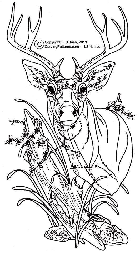 2742 best images about coloring sheets on Pinterest